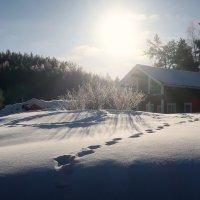 Карельская зима :: Ирина Фирсова
