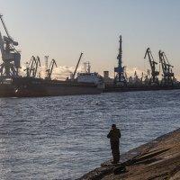 В порту :: Максим Максимов