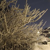Тихое раннее утро нежится в пушистом снеге..... :: Наталия Павлова