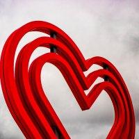 День Святого Валентина :: Дмитрий