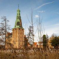 Замок и тростник :: Николай Гирш