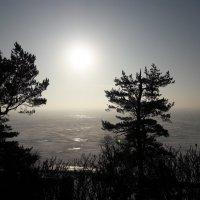 Солнышко проснулось на заливе :: Красоты Балтики