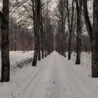 Последние дни февраля... :: Александр Попович