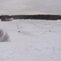 Лебедянский пруд с продухами для рыбы :: Анна Воробьева