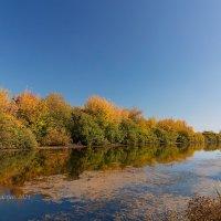 Осеннее озеро :: Александр Синдерёв