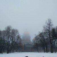Туманным днём :: Самохвалова Зинаида