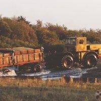 уборка пшеницы :: Влад Платов