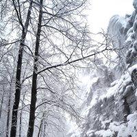 Запомнить зиму такой   ч.5 :: андрей