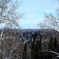 Жизнь прекрасна!!! :: Радмир Арсеньев