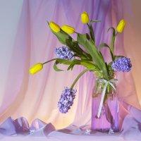"""""""И с этого дня начинается в мире весна..."""" :: Olenka"""