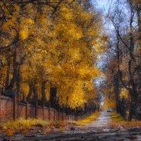 Янтарная осень (рис.) :: Глeб ПЛATOB