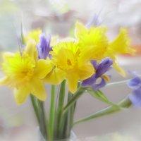 О нежности весны... :: Лилия *