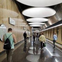 Московское метро, станция Юго-Восточная :: Agapa ***