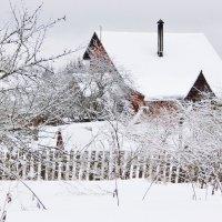 Моя берлога :: Юрий Пучков