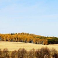 Осень :: Татьяна Перегудова