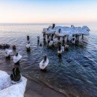 Зимние причуды Балтики :: Владимир Самсонов