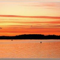 Оранжевый закат над Белым озером. :: Ирина Беркут