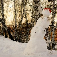 Снеговик на закате :: Сергей Царёв