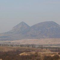 Гора Верблюд :: Светлана Попова