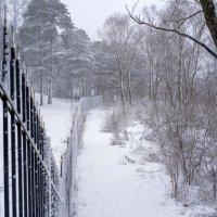 Забор и снегопад :: Арина