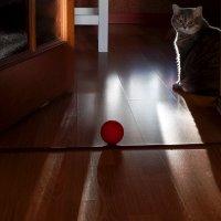 Мячик :: Арина