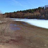Всё говорливее подлёдная река... :: Лесо-Вед (Баранов)
