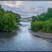 На реках Камчатки. :: Aleksey Afonin