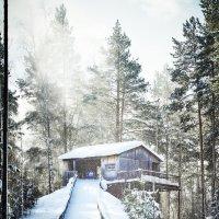 Зима в разгаре. :: андрей
