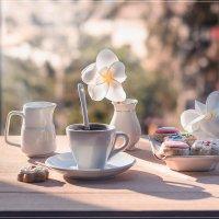 на террасе. Coffee times :: Svetlana Galvez