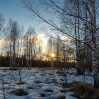 Весна идёт :: Олег Пученков