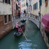 Венеция  .... :: Алёна Савина
