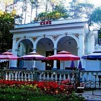 Кафе в Нижнем (Старом) парке курорта.. :: Евгений