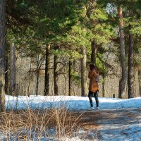 Весна в парке :: Александр Синдерёв