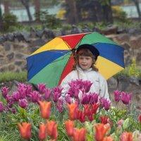 новая весна :: Всеволод