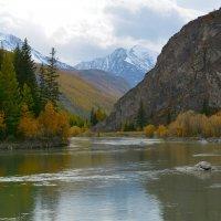 Река в горах. :: Валерий Медведев