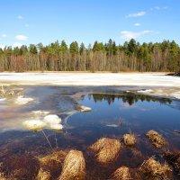 Пробуждение озера :: Андрей Снегерёв