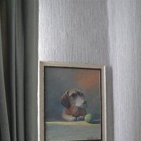 Друг :: Андрей Зайцев
