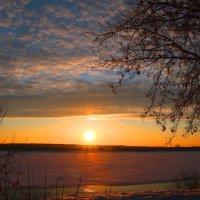 Весной на реке :: владимир тимошенко