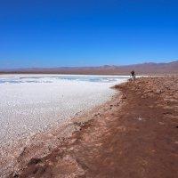 Наедине с пустыней... :: Владимир Жданов