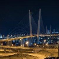 Ночной г. Владивосток_3 :: Alexandr Khizhniak