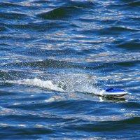 Океанские гонки... Лидер :) :: Юрий Куликов