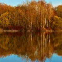 Апрель. Отражение весны в зеркале пруда в лучах закатного солнца... :: Ольга Русанова (olg-rusanowa2010)