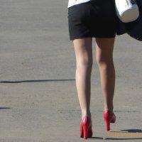 Ах, эти ножки! :: Андрей Макурин