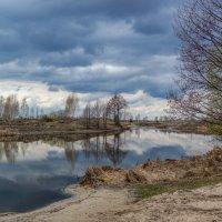 Весенний пейзаж ...... :: Александр Селезнев