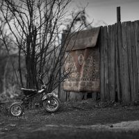 Детство деревенское ... :: Евгений Хвальчев