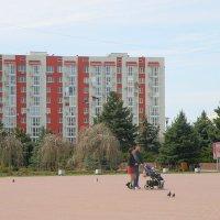 Семейная прогулка :: Александр Рыжов
