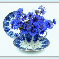 У всех тоже дома есть чашка, которая определенно чем - то лучше, чем остальные сорок? :: TAMARA КАДАНОВА