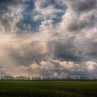 После весеннего дождя :: Сергей Шаталов
