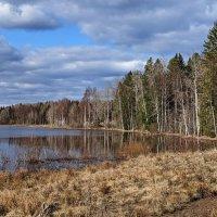 Весна в Карелии :: Liliya Kharlamova