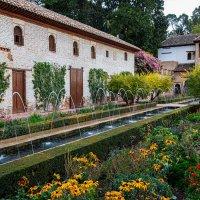 Alhambra 11 :: Arturs Ancans